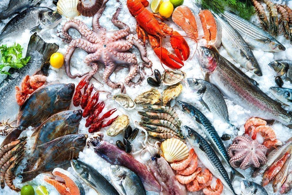 Устрицы и сырые моллюски