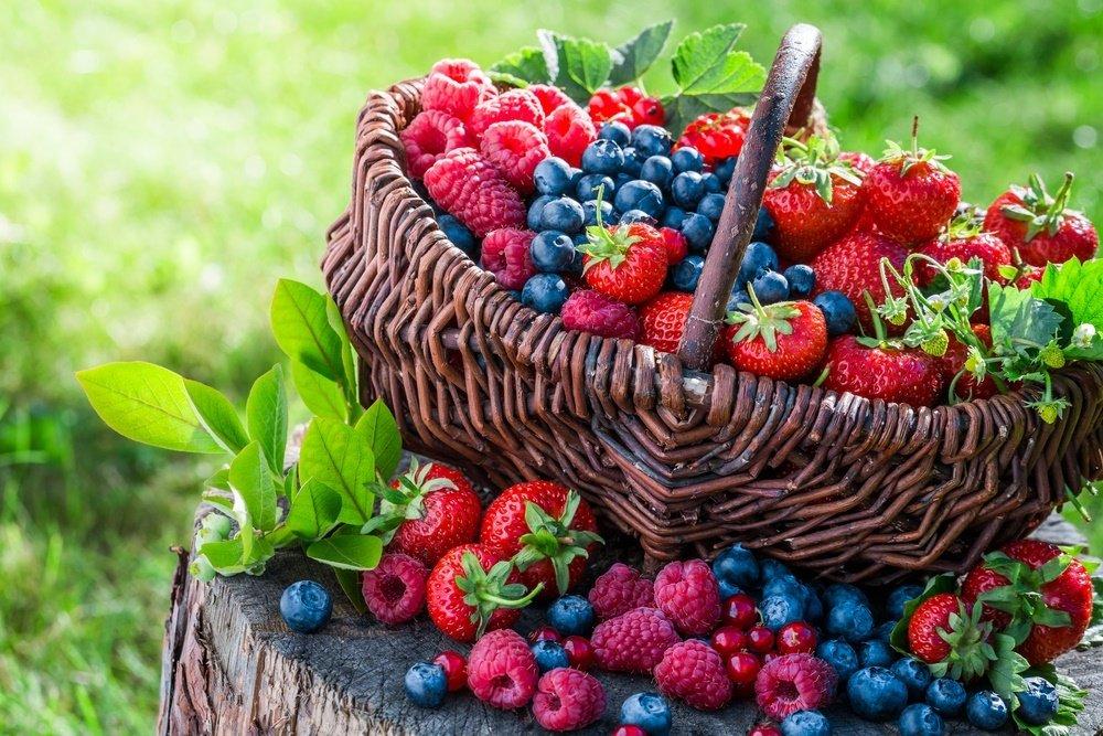 Польза ягод для здоровья