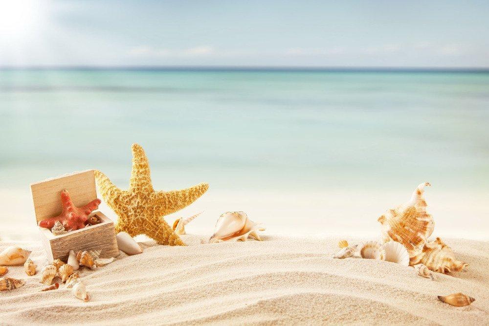 Игры малышей на ракушечном пляже