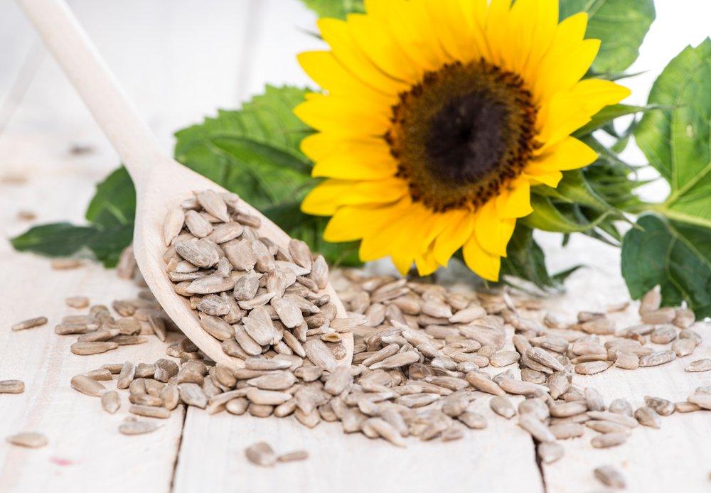 Семена и семена подсолнечника