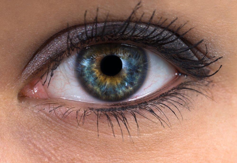 Глазные обитатели как защитники и лекарства