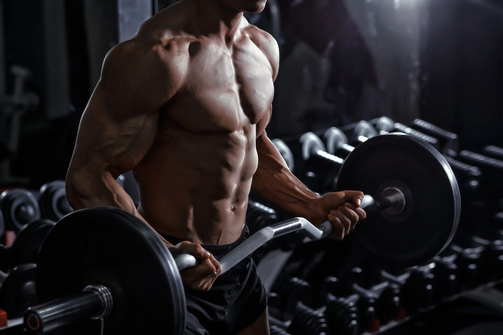 Правила проведения фитнес-тренировки для бицепса