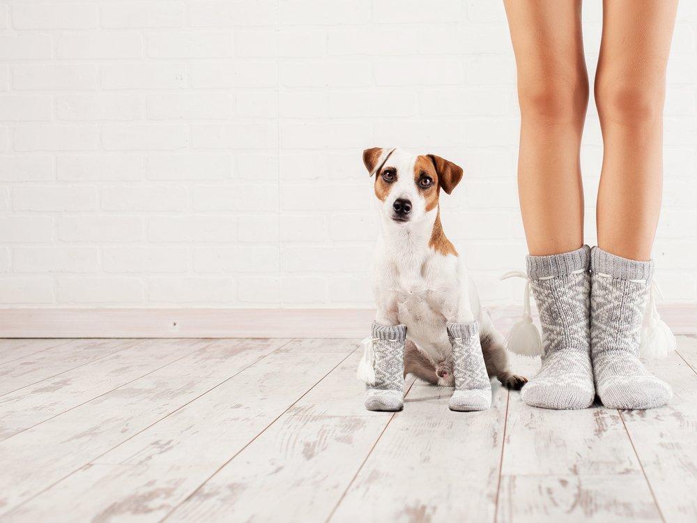 Запасные носки или сменная зимняя обувь