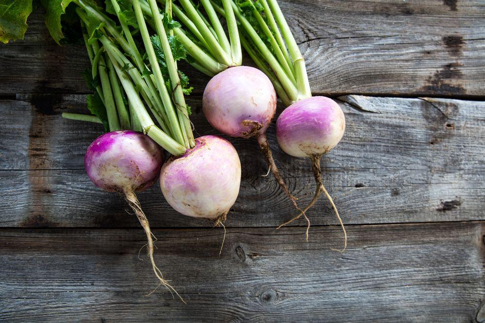 Брюква — овощ, весьма почитаемый в Швейцарии