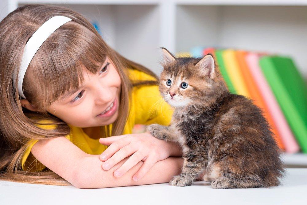 Любовь к животным или здоровье?