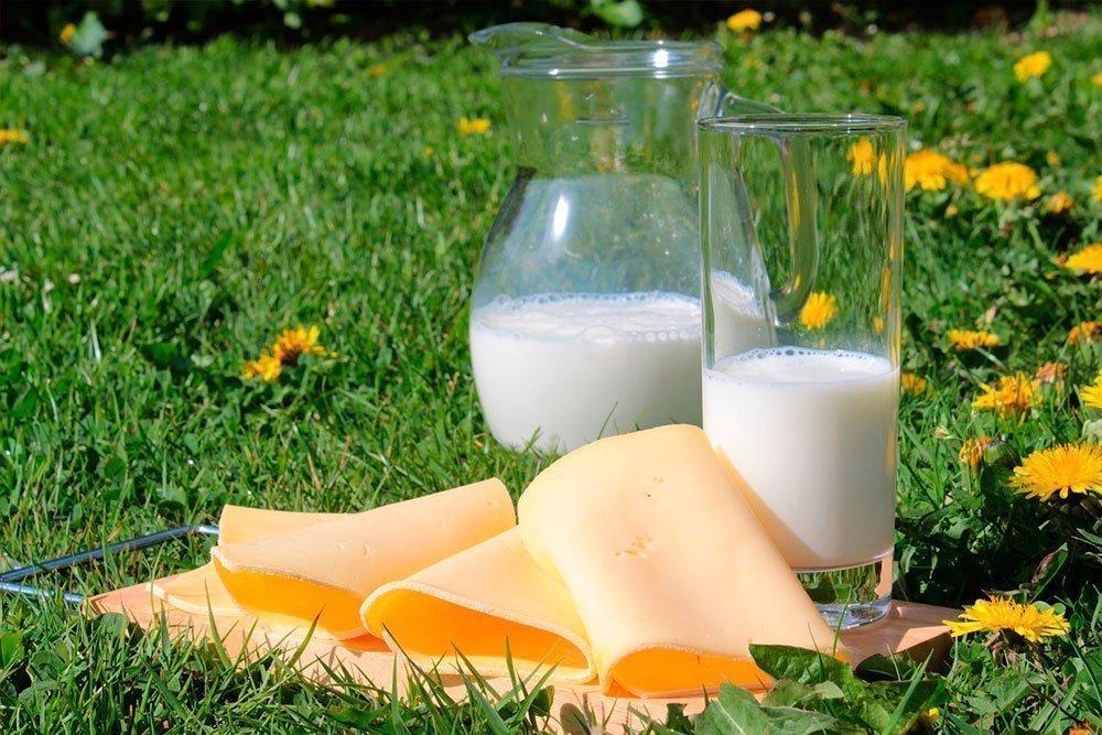 Факт № 7: Обезжиренное молочные продукты содержат больше кальция
