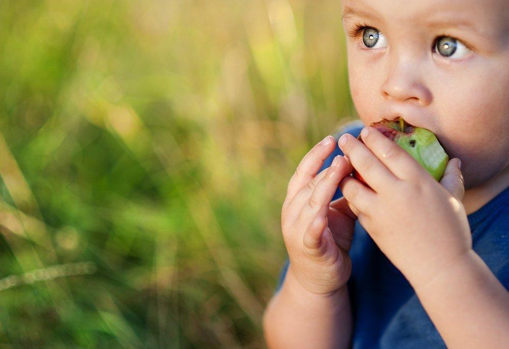 Здоровое питание и физическая активность как части ЗОЖ дошкольника