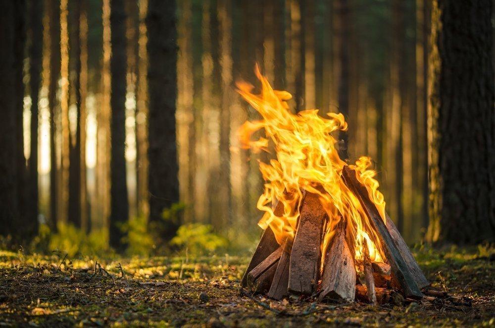 Огонь, шашлыки и железо: ожоги, травмы, порезы