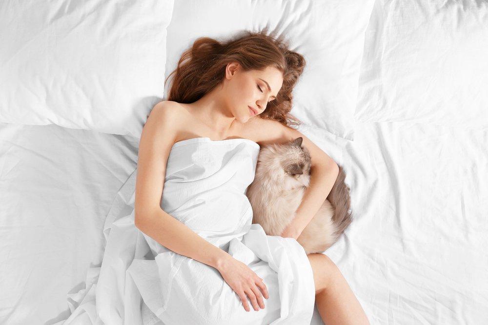 Почему кошка в постели полезна для здоровья?