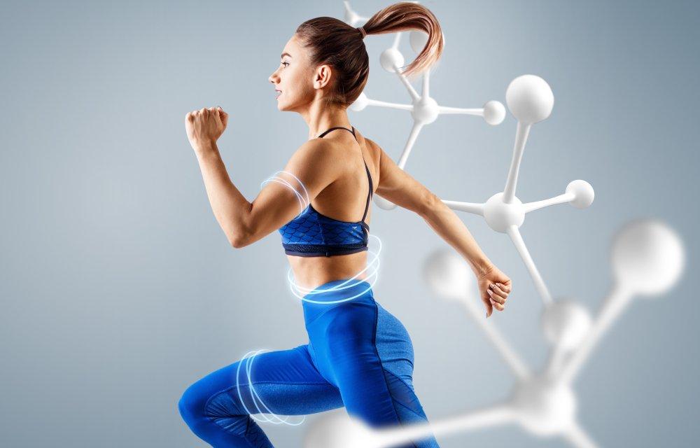 Обмен веществ: факторы, влияющие на скорость метаболизма