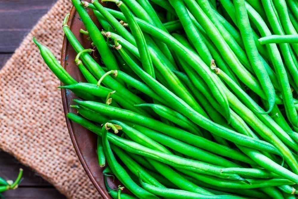 Диеты на фасоли: как продукт воздействует на организм?