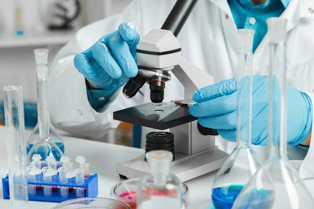 Синтез моноклональных антител