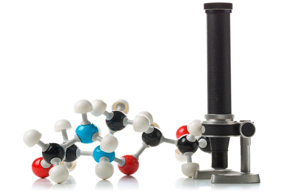 Незаменимые аминокислоты и их значение