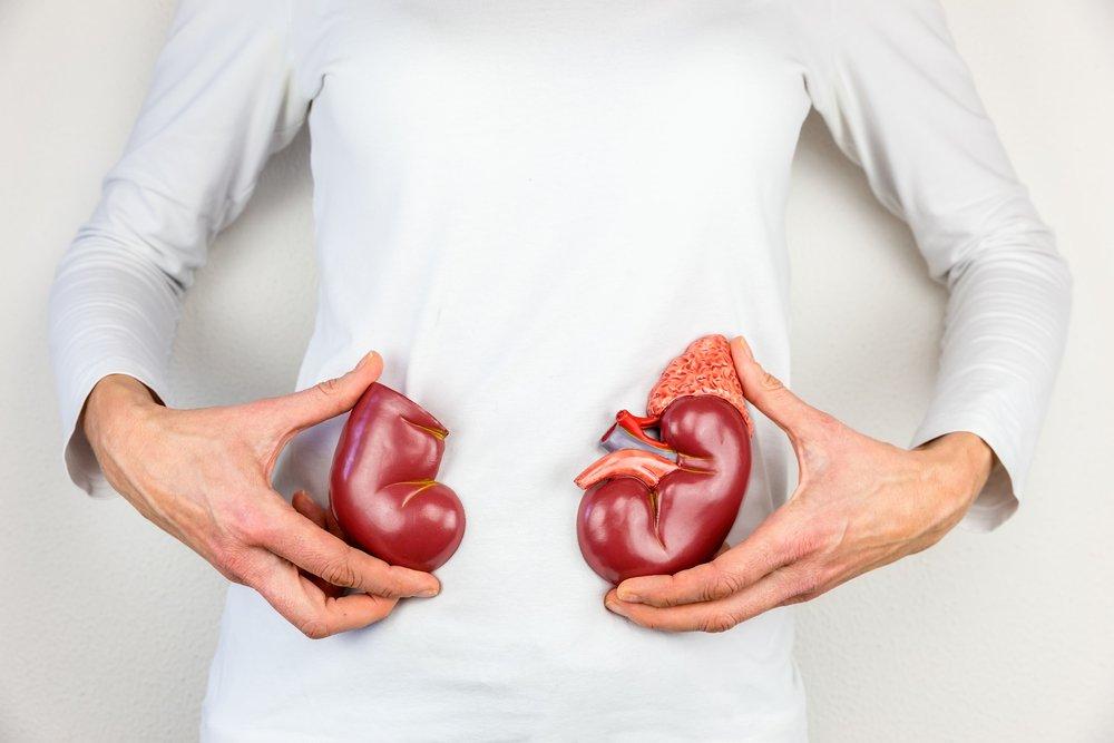 Кортизол и ожирение