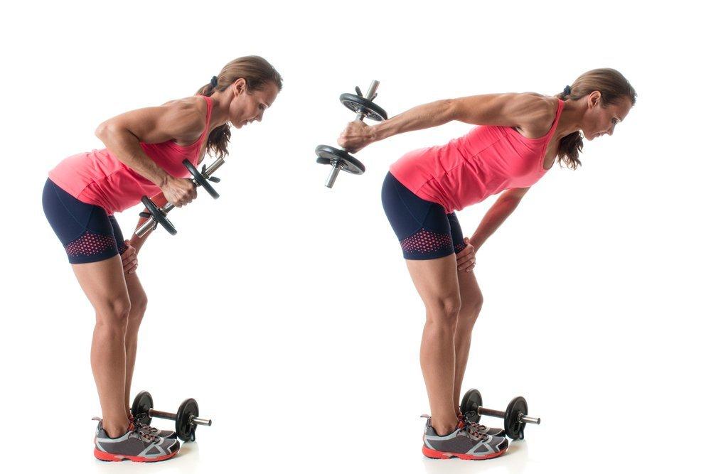 Упражнения с гантелями для основных мышечных групп