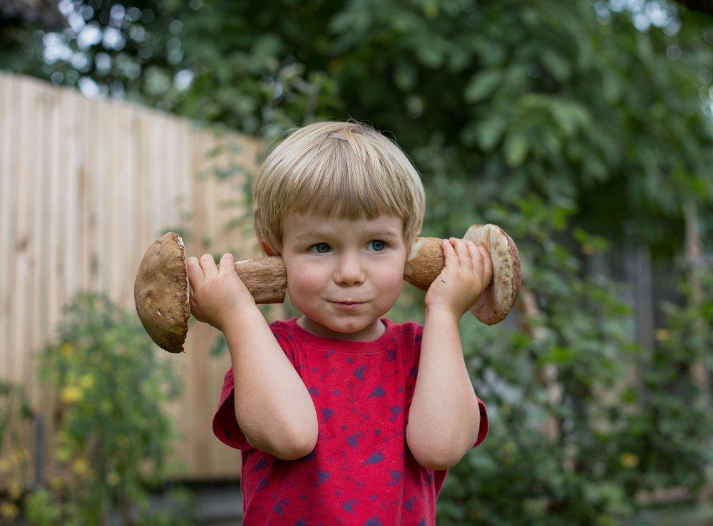 Если бы, да кабы, да в ушах росли грибы…