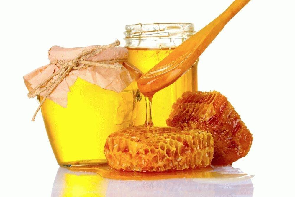 Укрепляем иммунитет, включив мед в рацион питания