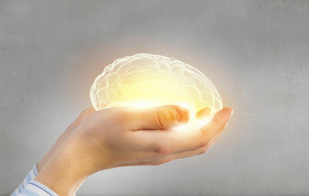 Мозг и психика