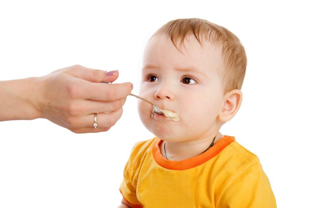 Какие существуют правила введения первого прикорма?