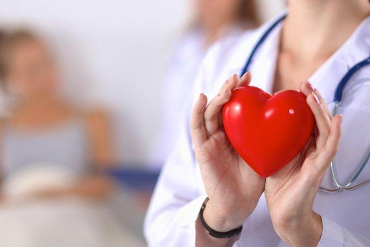 Болезни сердца и сосудов: факторы развития