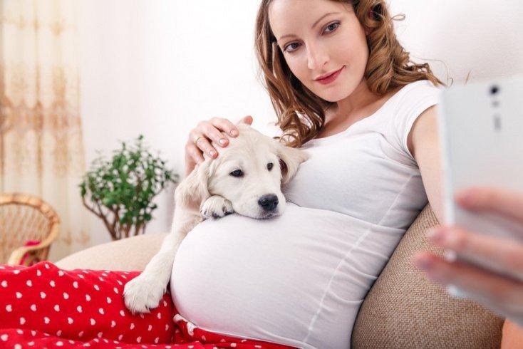 Профилактика заболеваний: как прожить счастливую беременность, не беспокоясь о заражении