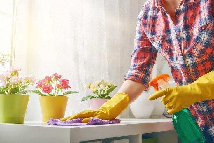 Что нужно провести при домашней дезинфекции