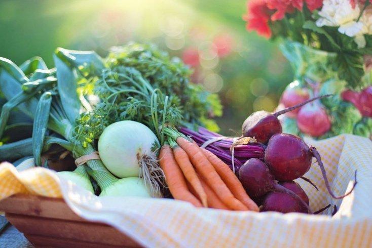 Правильное питание — лучшая профилактика запора