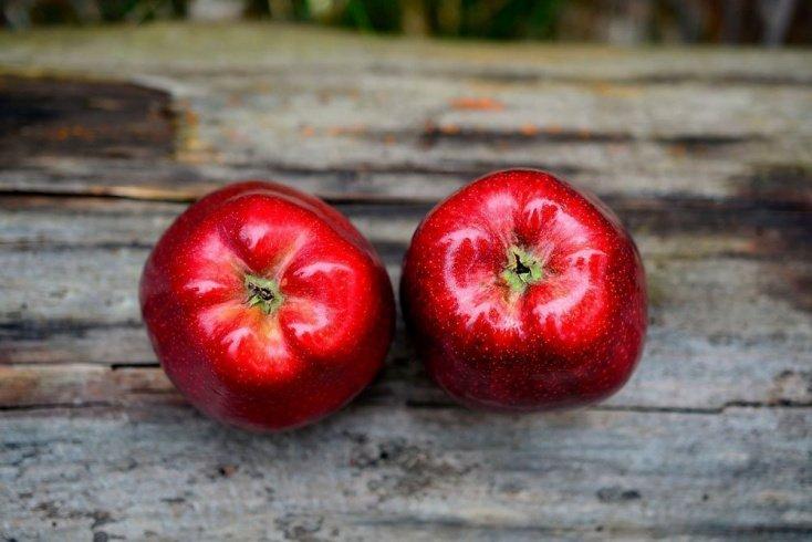 Меню диеты: несколько вариантов для похудения и здоровья