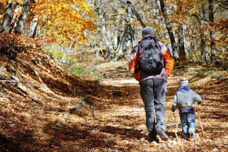 Какую детскую одежду лучше выбрать для отдыха малыша в лесу?