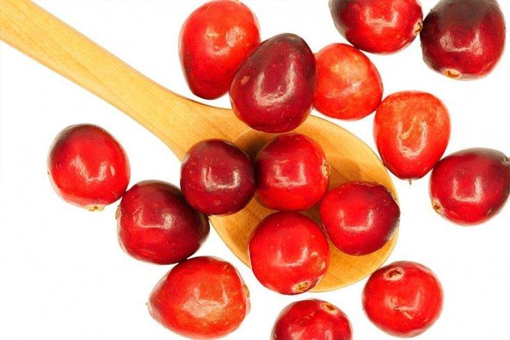 Клюква — немного кислинки в диетическом питании