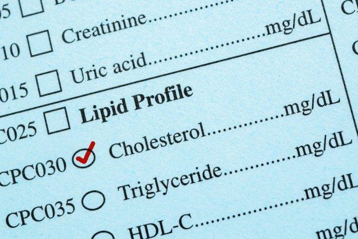 Холестерин и его функции в организме