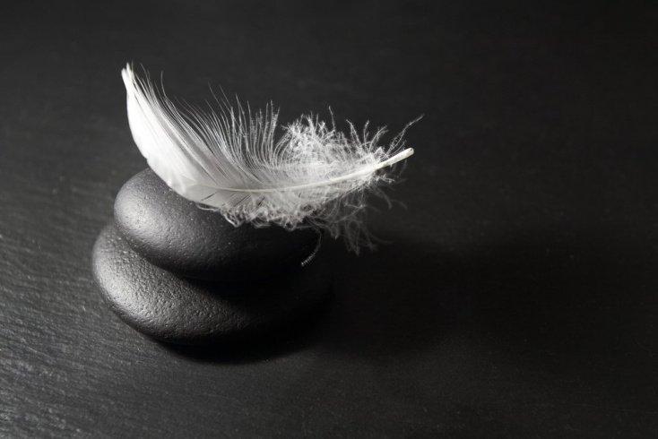 Перья: мощный антистрессовый эффект от массажа