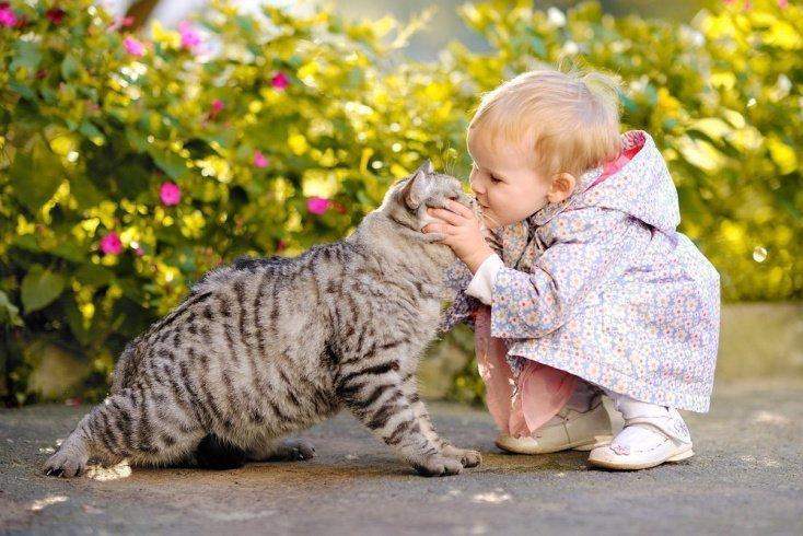 Фотографии детей, котиков и собачек