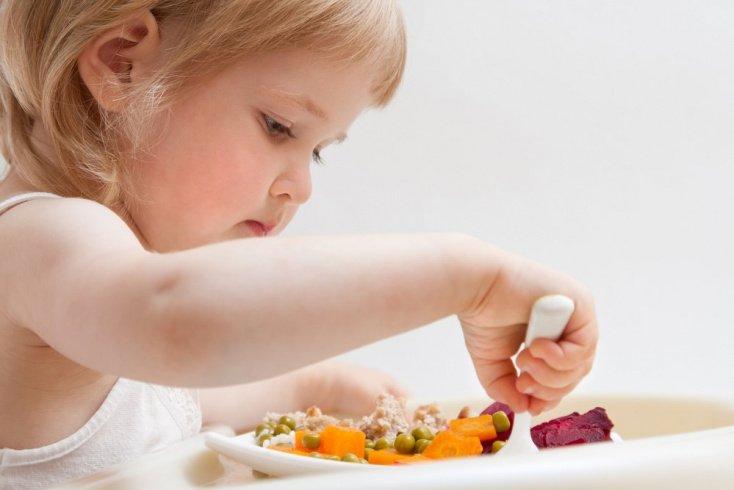 Основы детской кулинарии: особенности питания