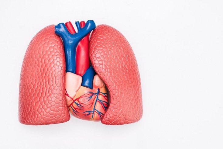 Симптомы и диагностика острой дыхательной недостаточности