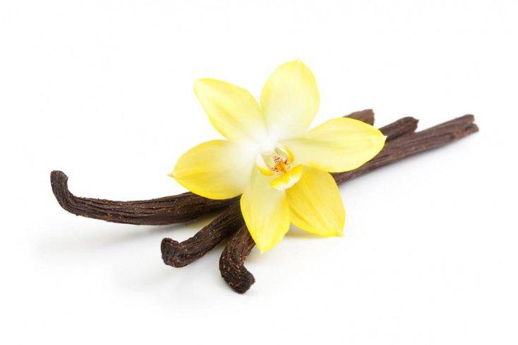 Диеты на ванили: чем сладкая пряность помогает в похудении?