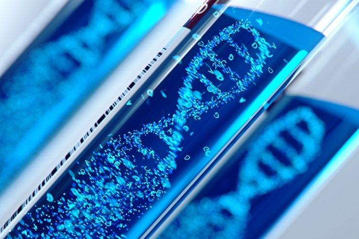 Я и мои родственники: когда ДНК-тесты сообщают неправду?