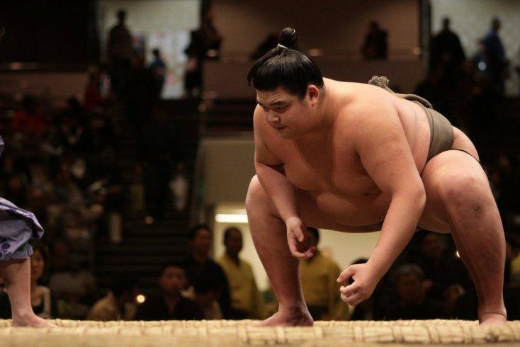 Болезни борцов сумо: как спорт вредит здоровью