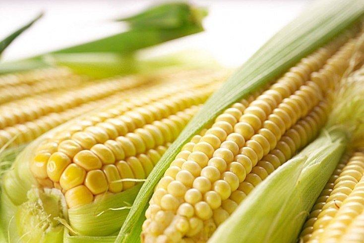 Кукуруза в здоровом питании