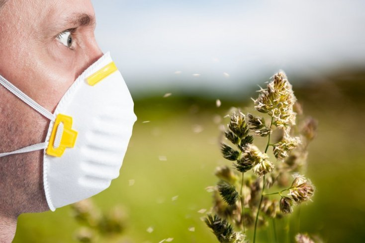 Как жить тем, кто страдает от аллергии
