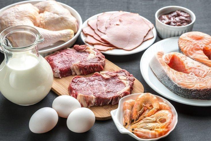 Крайне опасный белковый рацион питания