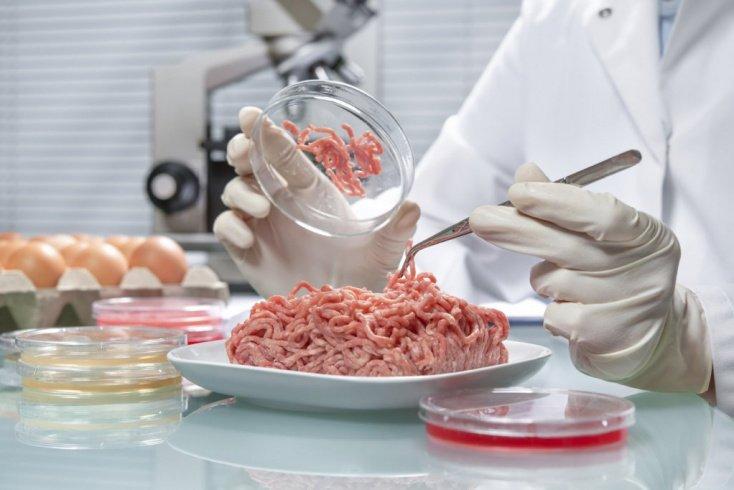 Опасные бактерии — кампилобактер