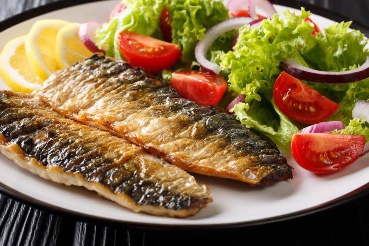 Рецепты белковой системы питания