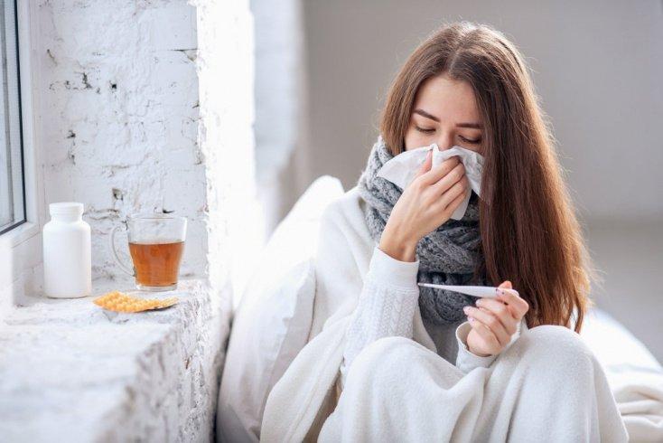 Эпидемия гриппа: «австралийский» след