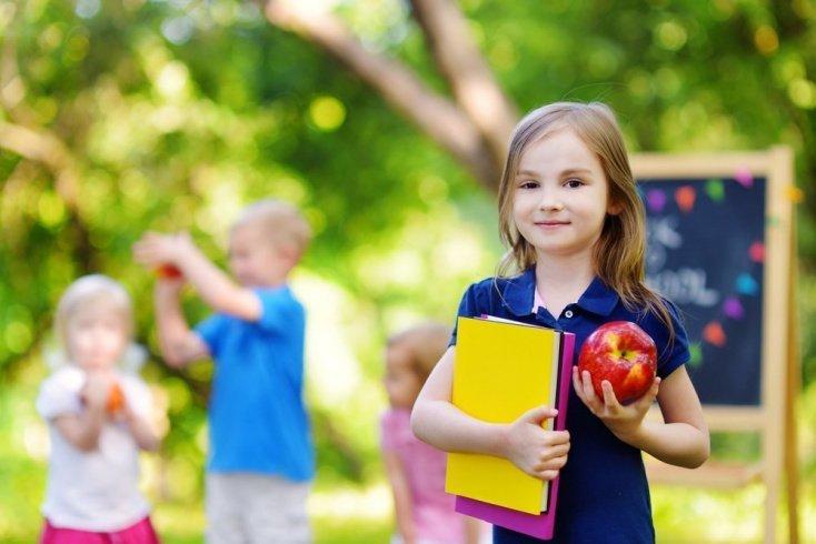 Дети на пороге школы: психологическое здоровье и особенности адаптации