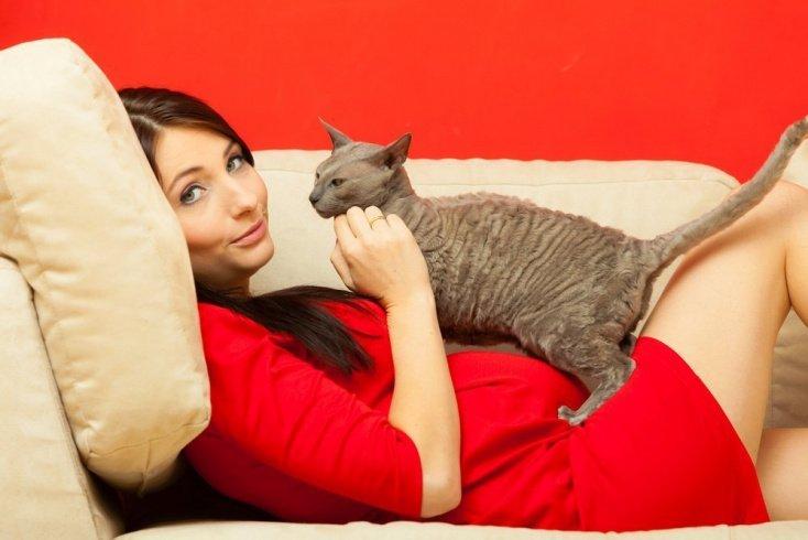 Если кошка живет в доме давно