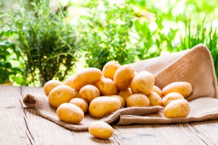 Не так страшен черт, как его малюют: польза картофеля для здоровья