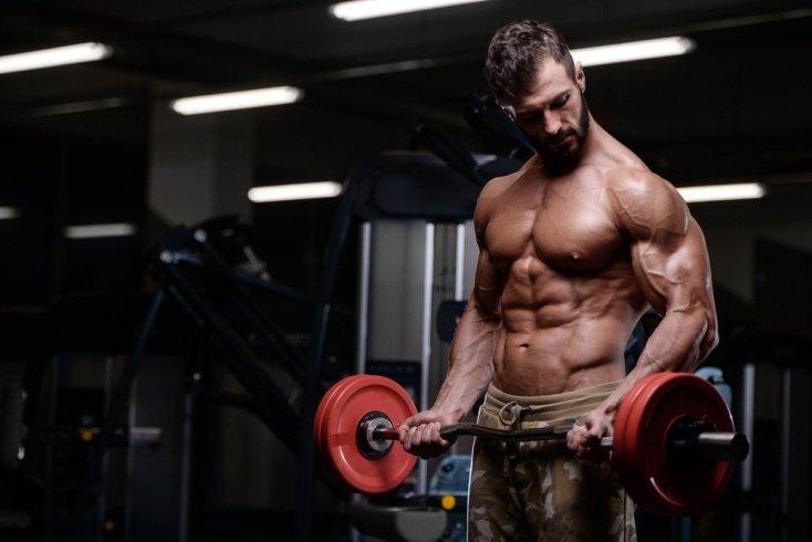 Упражнения на бицепс и трицепс в один день