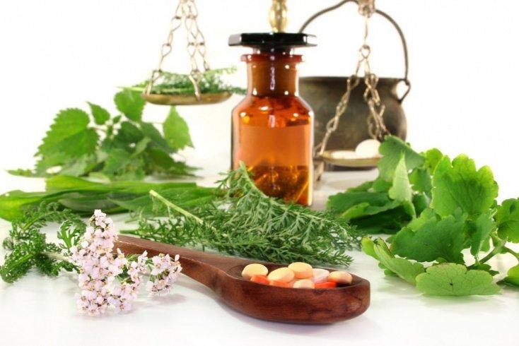 Фитотерапия и растительные лекарства