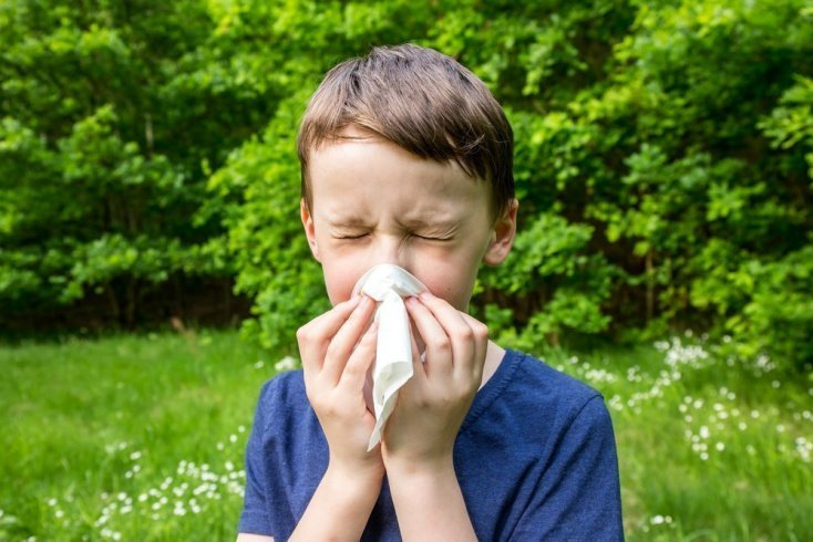 Почему возникает аллергический насморк